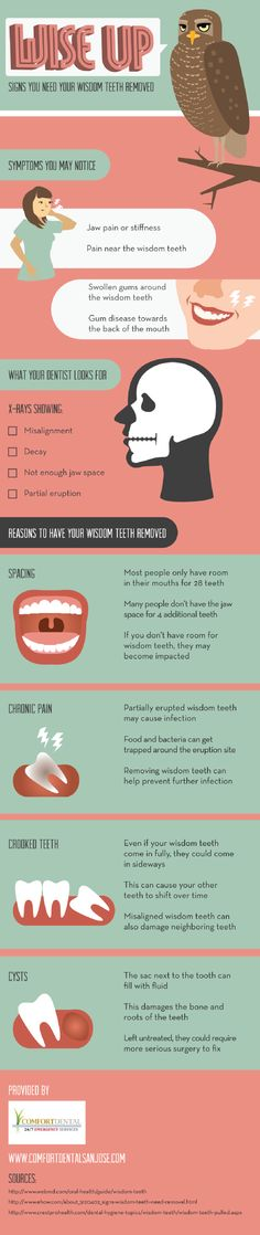 When a dentist examines wisdom teeth in an X-ray, he or she looks for misalignment, decay, cramped jaw space, or a partial tooth eruption. Check out this infographic from a dentist in San Jose to learn more about wisdom teeth.