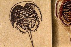 """Horseshoe Crab 2""""x3"""" Stamp"""