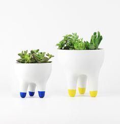 https://www.fubba.com.br/kit-vasos-porcelana-1g-1gg