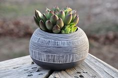 Orb Shaped Black + White Ceramic Planter via @Etsy