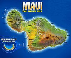 All kinds of good Maui Info