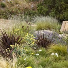 KATE STICKLEY, GRETCHEN WHITTIER, A Painterly Approach, APLD INTERNATIONAL LANDSCAPE DESIGN AWARDS 2013 Gold Award