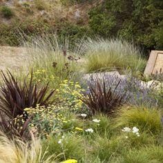 KATE STICKLEY, GRETCHEN WHITTIER, A Painterly Approach, APLD INTERNATIONAL LANDSCAPE DESIGN AWARDS 2013 Gold Award