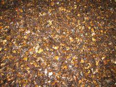 Vietnam cashew nut shell liquid oil