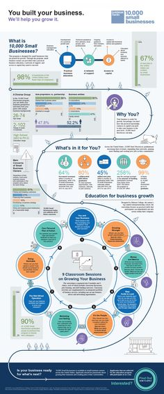 Goldman Sachs: 10,000 Small Busineses Infographic