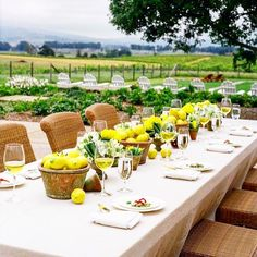when life hands you lemons, have a dinner party al fresco with plenty of center pieces.