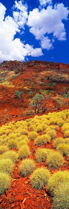 Spinifex, Karijini National Park • North Western Australia     ✯ ♥ ✯ ♥  image credit:   http://newwonderfulphotos.blogspot.com/2013/02/spinifex-karijini-national-park-north.html