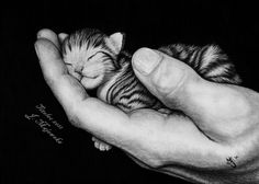 Every life is a treasure ...by ~titolec87  Traditional Art / Drawings