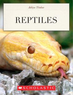 Reptiles - Aditya Thakur   Pets  497148563: Reptiles - Aditya Thakur   Pets  497148563 #Pets
