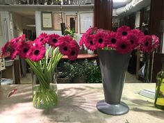 My Flower, Flowers, Glass Vase, Plants, Home Decor, Decoration Home, Room Decor, Plant, Royal Icing Flowers