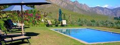Galenia Estate is a 5 Star olive estate situated in Montagu, Western Cape, South Africa. A perfect base from which to explore the wine farms of the Robertson Wine Valley. South Africa, Two By Two, Explore, Outdoor Decor, Tops
