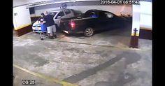 Polícia faz a maior apreensão de óleo de maconha já registrada no DF