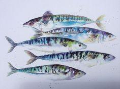 Watercolour Mackerel Fish / Sea life Art A4 Print From Original Artwork