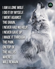 "Lone Wolf (The Song) Official Music Video - Fearless Motivation ""By myself I go on. By myself in the cold. I'm a lone wolf. Wolf Pack Quotes, Wolf Qoutes, Lone Wolf Quotes, Werewolf Quotes, Wolf Poem, Native American Wolf, Wolf Warriors, Wolf Sketch, Fantasy Wolf"