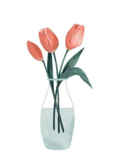 Image of Tulipanes