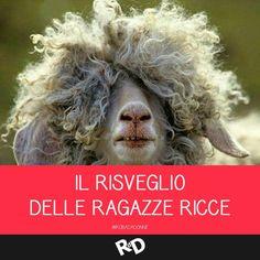 #link #citazioni #facebook #divertenti #ragazze #ricce #robadadonne