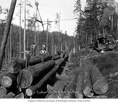 Logging Equipment, Old Trees, Logs, Locomotive, Trains, Black And White, Digital, Model, Art