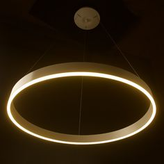 LED circle pendant is an aluminium and acrylic pendant that would suit a feature light situation. Light Globes, Globe Lights, Round Crystal Chandelier, Clinic Interior Design, Interior Ideas, Circle Light, Edison Lighting, Light Fittings, Led Strip