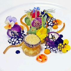 Quail Galantine Technically this dish looks impossible for me to achieve, but it is one of the most beautiful plates of food I have EVER seen ❤️ Weight Watcher Desserts, Food Design, Color Composition, Food Plating Techniques, Plate Presentation, Low Carb Dessert, Food Decoration, Molecular Gastronomy, Edible Art