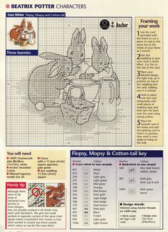 Peter Rabbit - Cross stitch