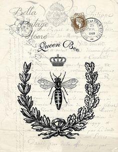 Botanical Print Queen Bee
