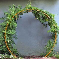 Tomato Trellis, Diy Trellis, Trellis Design, Garden Trellis, Trellis Ideas, Hops Trellis, Bean Trellis, Tomato Cages, Herbs Garden