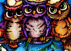 'Whoooo Knew...O is for OWLS' by Joni Nickrent Owl Species, Power Animal, Owl Always Love You, Owl Art, Cute Owl, Big Eyes, Bird Feathers, Art Forms, Drawings