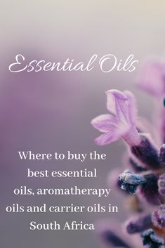 A great place to buy Essential oils. Organic Essential Oils, Best Essential Oils, Prescription Eye Drops, Aching Legs, Work Related Stress, Litsea Cubeba, Cedarwood Oil, Aromatherapy Oils, Sore Muscles