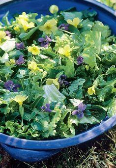 Ensalada de primavera con flores - Flores comestibles: recetas - ¿Quién no disfruta de una buena ensalada? Y es que, una ensalada con flores puede ser un entrante perfecto para cualquier ocasión. El toque de glamour que le aportan los...