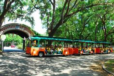 St. Augustine Tours and Sightseeing with Old Town Trolley