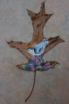 White-breasted Nuthatch painted on a oak leaf by sherrylpaintz.