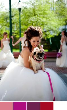 another pug. what a popular wedding dog.