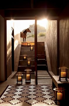 Ralph Lauren Home's Roark Hurricanes highlight western floor covering and stairs that to ascend to open desert hills