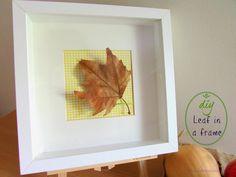 Ef Zin Creations: Leaves in frames!!!