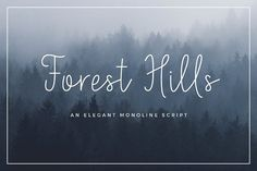 Forest Hills Script by Peacelettering on @creativemarket