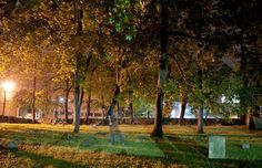 The graveyard at Purchase College. Photo by Alex Bellink.