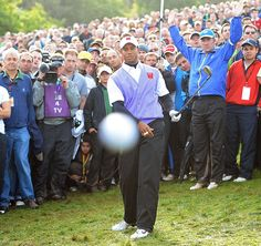 Tiger Woods attempts to hit out of the rough, but instead hits Daily Mail photographer Mark Pain's camera with the ball on the final hole of the 2010 Ryder Cup.