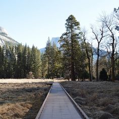 """""""Back in the city & missing this place #Yosemite"""""""