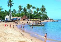 Praia do Forte - Bahia, Brasil. Ready to go back..