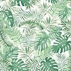 Palm and rubber plant leaf print tropical wallpaper from b&q