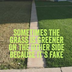 Sometimes the grass is greener on the other side because it's fake