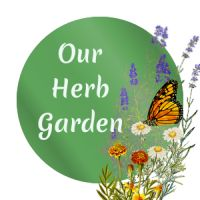 Welcome to Our Herb Garden! Tons of info on assorted herbs including companion plant recommendations.