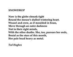 snowdrop poem ted hughes