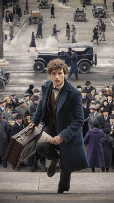 Estilo Harry Potter, Arte Do Harry Potter, Harry Potter Characters, Harry Potter Universe, Harry Potter World, Fantastic Beasts Movie, Fantastic Beasts And Where, Eddie Redmayne Fantastic Beasts, Hogwarts