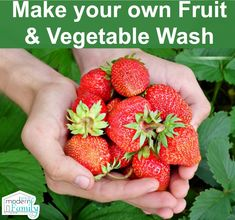 Great all-natural cleaner for fruits & vegetables! yourmodernfamily.com