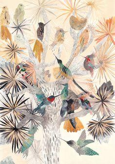 HUMMINGBIRD~Hummingbirds and Joshua Tree