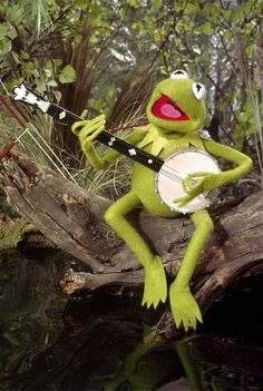 Kermit the Frog grew from minor character to iconic Muppet 57 years ago Kermit The Frog Puppet, Sapo Kermit, Frogs Preschool, Sapo Meme, Frog Wallpaper, Frog Logo, Banjo, Frog Illustration, Frog Meme