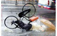 https://cretoniatimesdotcom.files.wordpress.com/2015/05/bicycle-accident-flooded-road.jpg