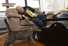 "He's perhaps the most well-known cat behaviorist in the country. Jackson Galaxy, host of ""My Cat From Hell"" on Animal Planet has given a pretty nice shout-out to All About Animals and Macomb County Animal Control. Animal Tv, Jackson Galaxy, Detroit Area, All About Animals, Cat Lady, Favorite Tv Shows, Animal Rescue, Seasons, Behavior"