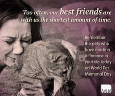 World Pet Memorial Day was June 14, 2014, but take each day to remember those wonderful pets who have shared your life and those killed in shelters everyday.